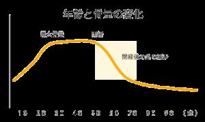 骨骨カルシウム、女性の骨密度、グラフ